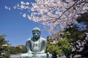 Il concetto di Natura di Buddha